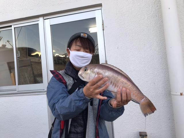 Uni 向山さん シロアマダイ  大きさは38cm